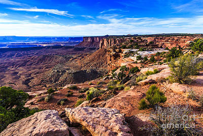 Photograph - Canyonlands National Park by Ben Graham