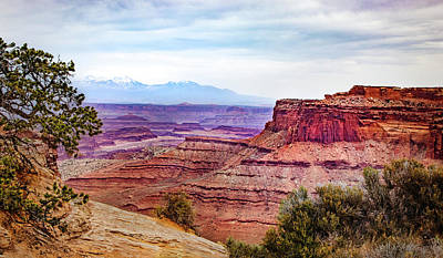 Photograph - Canyonlands National Park by James Woody