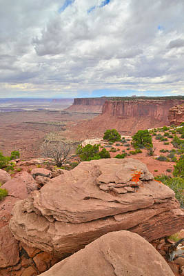 Photograph - Canyonlands Overlook by Ray Mathis