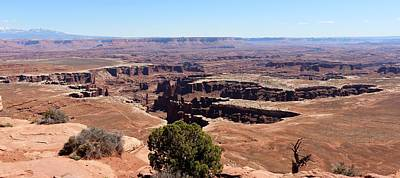 Photograph - Canyonlands View - 14 by Christy Pooschke