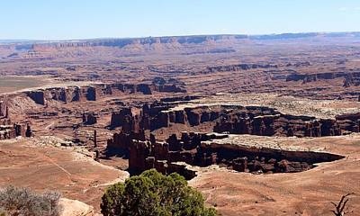 Photograph - Canyonlands View - 15 by Christy Pooschke