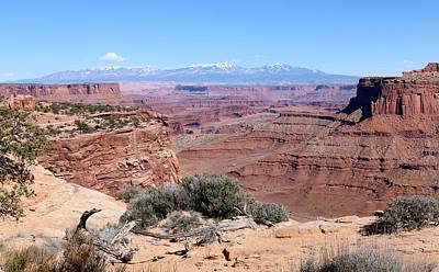 Photograph - Canyonlands View  by Christy Pooschke