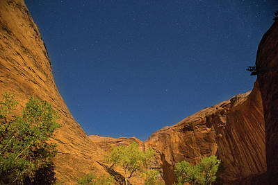 Photograph - Canyons And Stars by Kunal Mehra