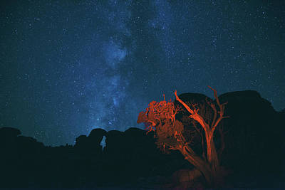 Photograph - Canyons, Stars And Solitude by Kunal Mehra