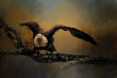Photograph - Capacity Unleashed Bald Eagle Art by Jai Johnson