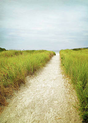 Photograph - Cape Ann Beach Trail by Brooke T Ryan