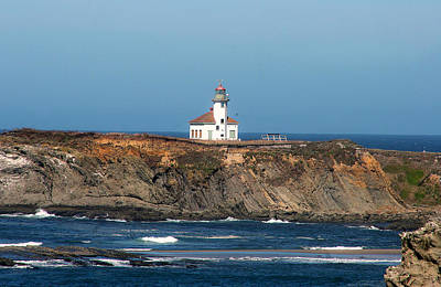 Photograph - Cape Arago Light Head by Dennis Bucklin