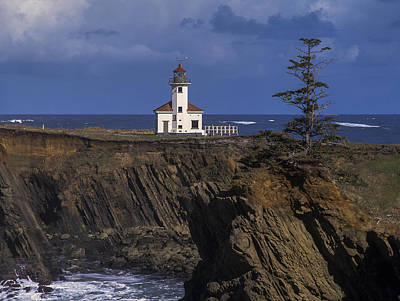 Photograph - Cape Arago Lighthouse by Robert Potts