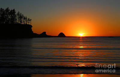 Photograph - Cape Arago Sunset by Marty Fancy