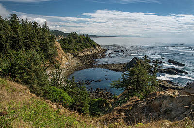 Photograph - Cape Arago Vista by Greg Nyquist