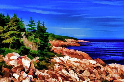 Photograph - Cape Breton Point by Rick Bragan