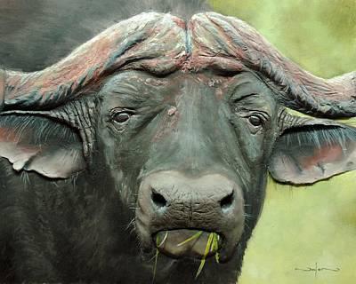 Cape Buffalo Painting - Cape Buffalo by Nolan Clark