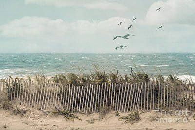 Sand Fences Photograph - Cape Cod Beach Scene by Juli Scalzi