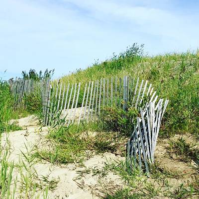 Photograph - Cape Cod by Beth Saffer