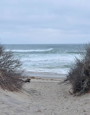 Photograph - Cape Cod - Coast Guard Beach Access by John Black
