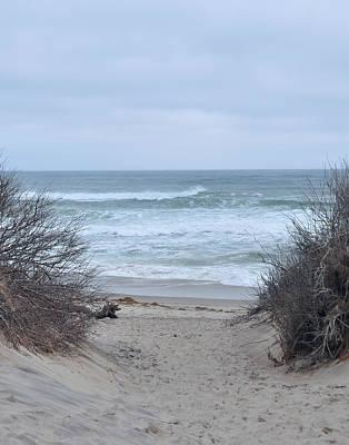 Photograph - Cape Cod - Coast Guard Beach Access by John Black