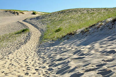 Photograph - Cape Cod Dune Path by Luke Moore