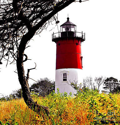 Photograph - Cape Cod Lighthouse Hdr by Raymond Earley