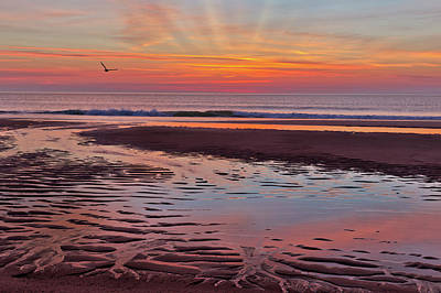 Photograph - Cape Cod Low Tide Sunrise by Bill Wakeley