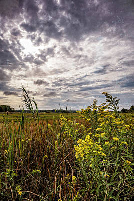 Photograph - Cape Cod Marsh 4 by Frank Winters