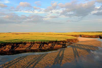Photograph - Cape Cod Marsh by Linda Sannuti