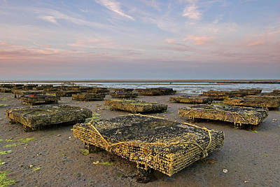 Photograph - Cape Cod Oyster Cases And Beds by Juergen Roth