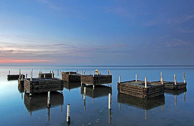 Photograph - Cape Cod Oyster Farm by Juergen Roth