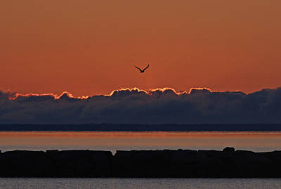 Photograph - Cape Cod Sunrise #2 by Ken Stampfer