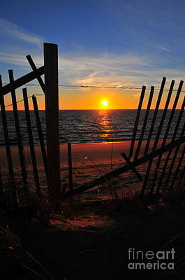 Cape Cod Sunset Art Print by Catherine Reusch Daley