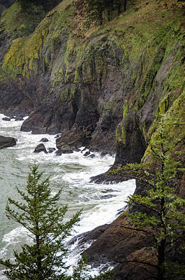 Photograph - Cape Disappointment by Anthony Doudt