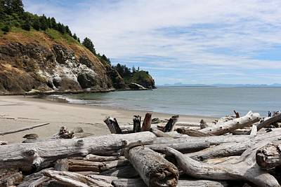 Art Print featuring the photograph Cape Disappointment by Christy Pooschke