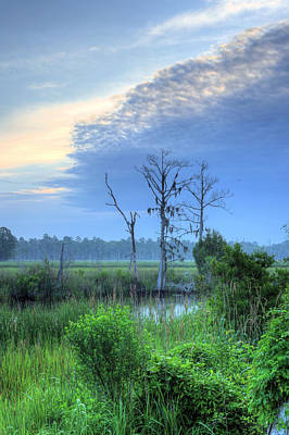 Cypress Swamp Photograph - Cape Fear Morning 2 by JC Findley