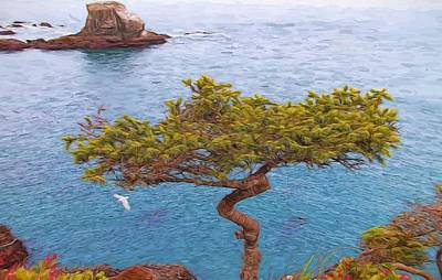 Olympic National Park Painting - Cape Flattery Bonsai by Dan Sproul