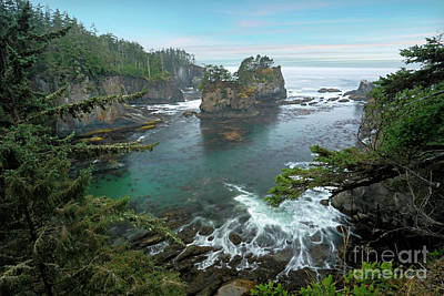 Photograph - Cape Flattery North Western Point by Martin Konopacki