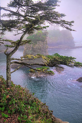 Digital Art - Cape Flattery Tranquility by Patrick Groleau