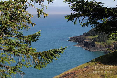 Photograph - Cape Foulweather  by Theresa Willingham