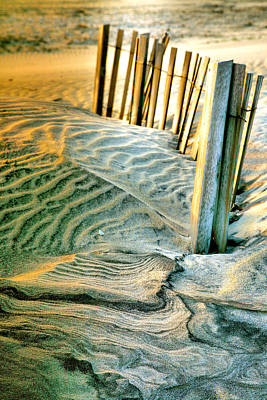 Cape Hatteras Dunes  Art Print by Steven Ainsworth