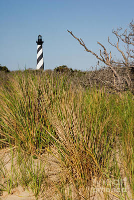 Photograph - Cape Hatteras In North Carolina by Jill Lang