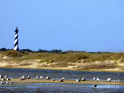 Photograph - Cape Hatteras by Jean Wright