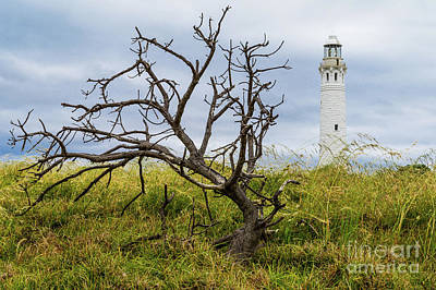 Photograph - Cape Leeuwin Lighthouse 1 by Werner Padarin