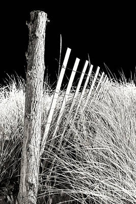 Photograph - Cape May Dune Fence by John Rizzuto