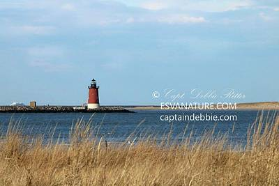 Photograph - Cape-may Lewes Ferry And Lighthouse by Captain Debbie Ritter