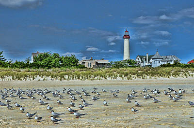 Photograph - Cape May Lighthouse 2 by Allen Beatty