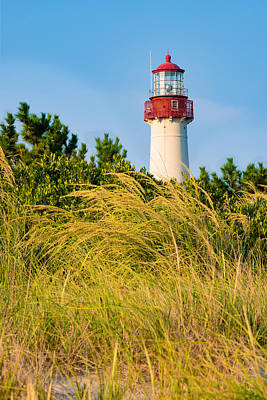 Photograph - Cape May Lighthouse And The Grass by Mark Robert Rogers