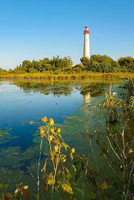 Photograph - Cape May Lighthouse And The Pond by Mark Robert Rogers