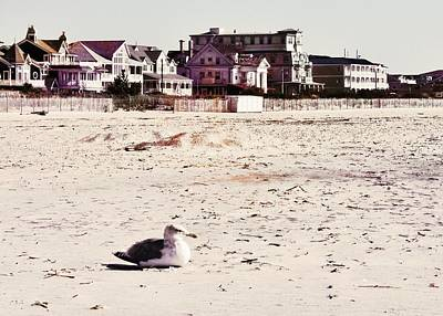 Photograph - Simple Cape May October by JAMART Photography