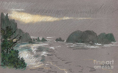 Oregon Coast Painting - Cape Meare by Donald Maier
