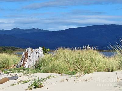 Photograph - Sand Grass Mountains Sky by Michele Penner