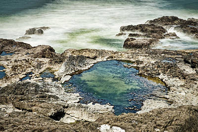 Photograph - Cape Perpetua Tidal Pool - Oregon by Stuart Litoff