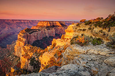 Photograph - Cape Royal Sunrise Grand Canyon by Scott McGuire